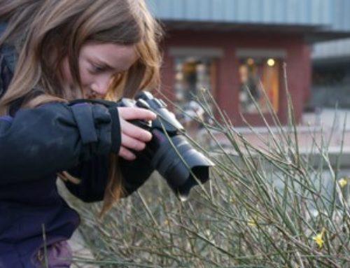 Fototipps für Neulinge