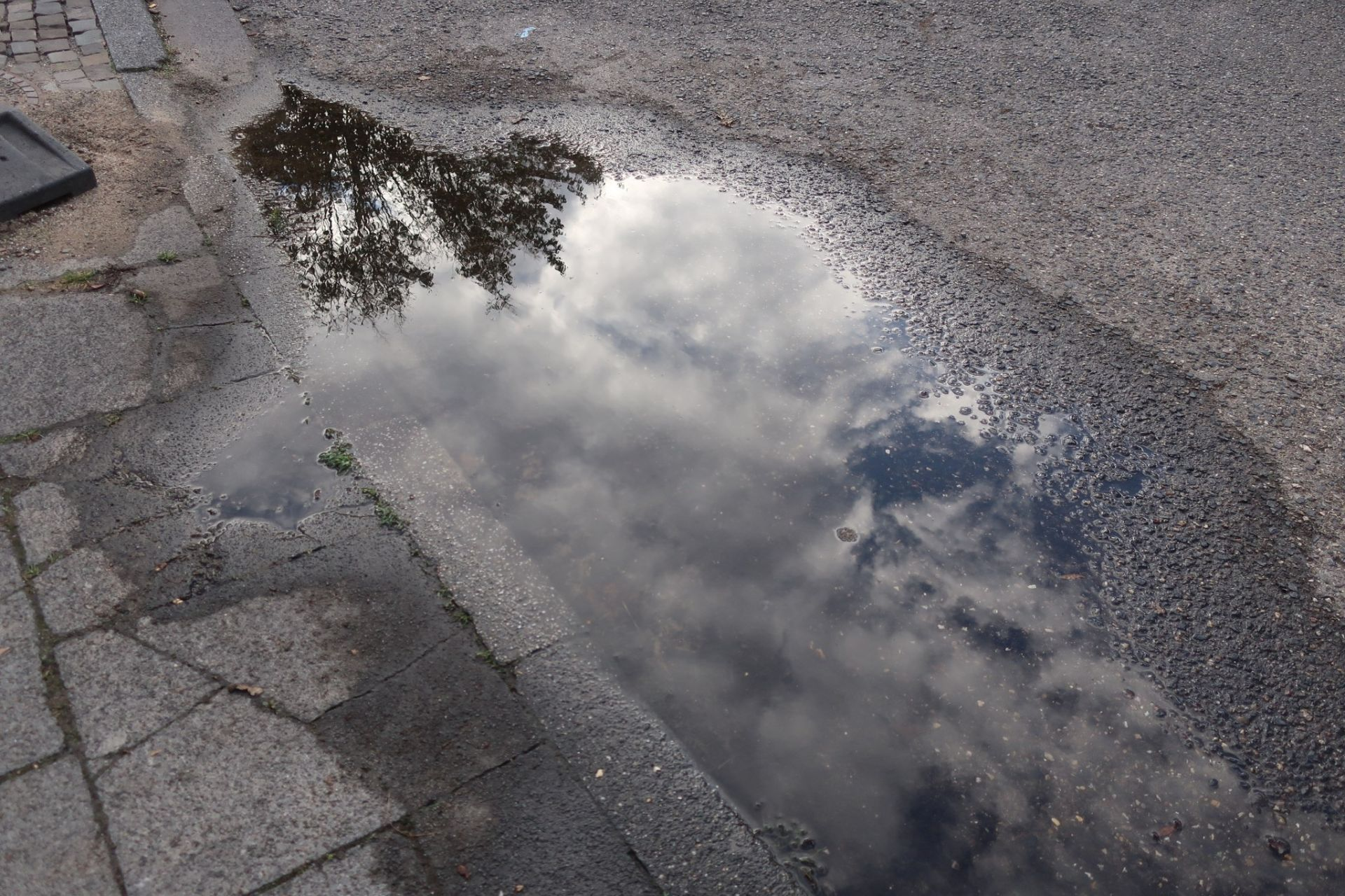 In einer Pfütze spiegelt sich ein Baum und der Himmel