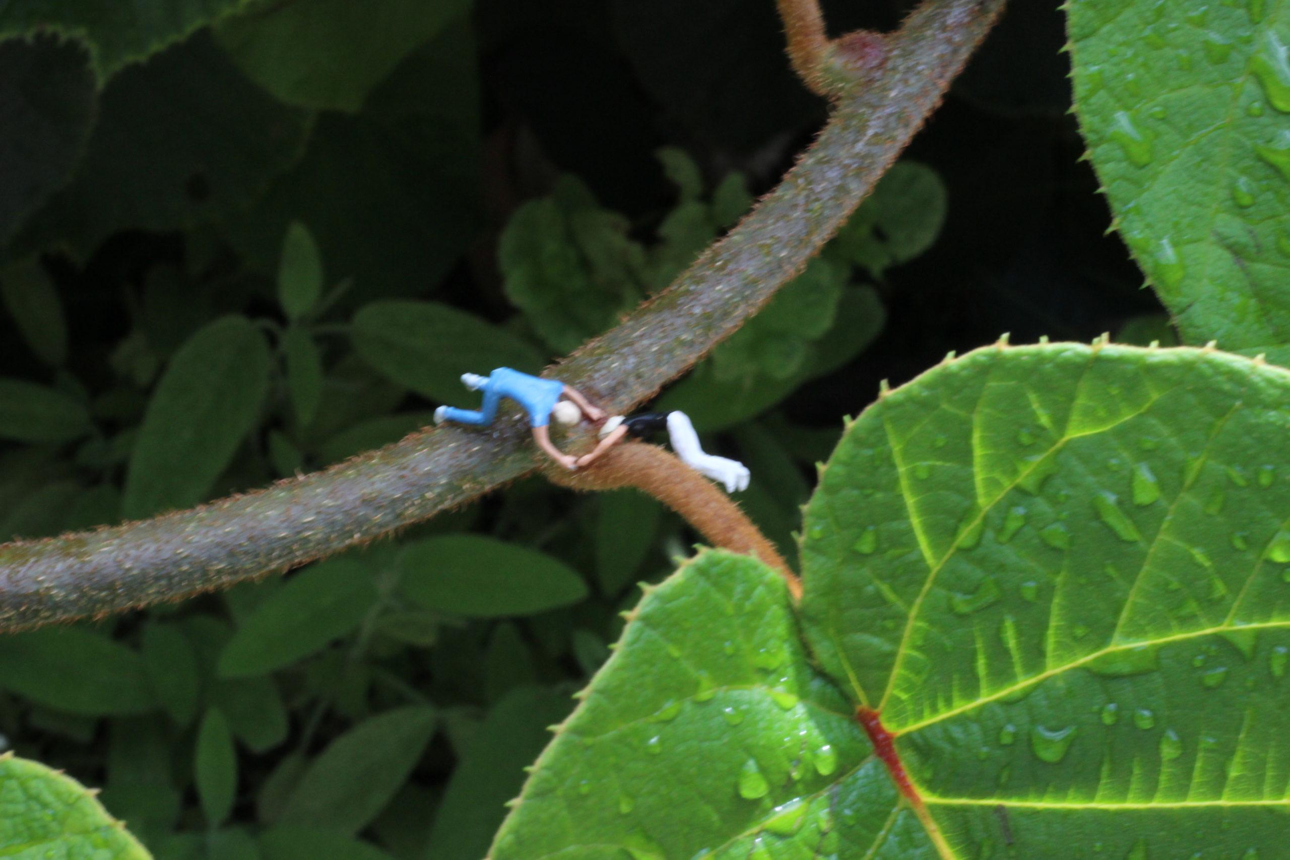 Figuren hängen an ast und Pflanze