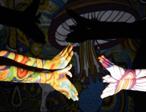 Bilderforscher:innen – Körperprojektionen